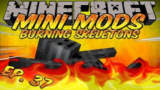 Minecraft Mini Mods Ep 37 - Burning Skellys Mod - Wither Skeleton Farm in the Overworld!