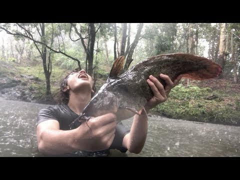 Wild barehanded animal catches
