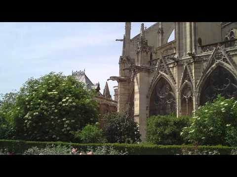 Tommy2Toonz/Notre Dame Cathedral-2011