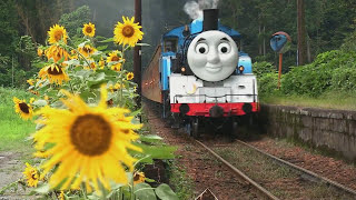 Real Life Giant Thomas and friends James, Hiro, Percy. (thomas wooden railway) full download video download mp3 download music download