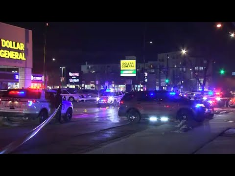 7 victims shot, at least 5 killed in shooting rampage between Chicago, Evanston: CPD