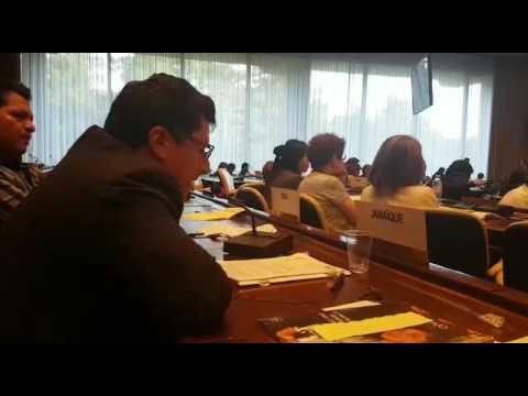 Intervención del presidente de la CUT en la 106° Conferencia de la OIT