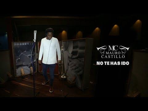 Letra No Te Has Ido Mauro Castillo