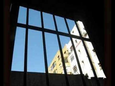 Immagine di Nella mia ora di libertà