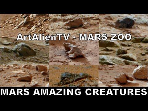 Amazing Creatures on Mars: NASA Curiosity Rover Anomalies. ArtAlienTV – MARS ZOO 480p