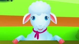 Download Lagu Qengji Vogël | Këngë për fëmijë Mp3