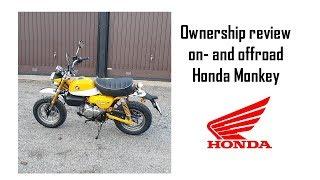 5. 2-week ownership review 2019 Honda Monkey