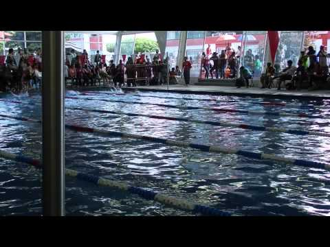 Video COMUDE 50m dorso NADANDO XXX COPA DE NATACION 2015 download in MP3, 3GP, MP4, WEBM, AVI, FLV January 2017