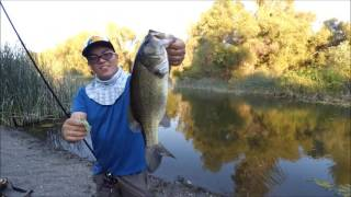 Clearlake (CA) United States  city photo : Hmong Bass Fishing | Clear Lake, California