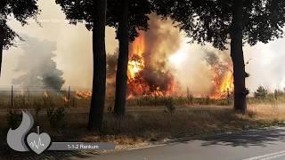 Video **Primeur** veel brandweer met spoed bij natuurbrand op park de hoge Veluwe in Otterlo MP3, 3GP, MP4, WEBM, AVI, FLV Mei 2019