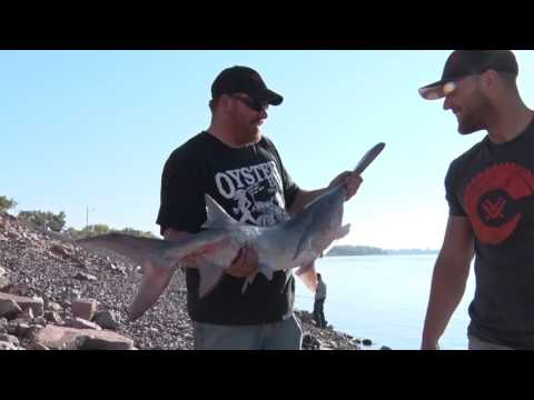 "Run2GunTV S3E2 Seg4 ""PaddleFish/Bow Fishing"""