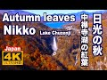 [4K]Autumn Lake Chuzenji in Nikko 日光の紅葉•中禅寺湖と華厳の滝 日本の紅葉 JAPAN