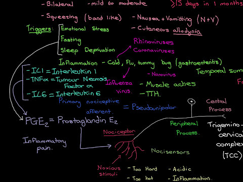 Headaches Part 11