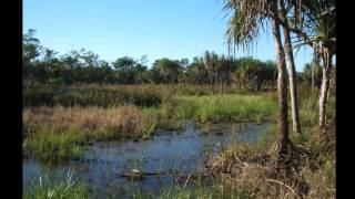 Ingham Australia  city photo : Tyto Wetlands via INGHAM North Queensland Australia in July
