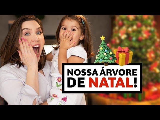 Montando a nossa ÁRVORE DE NATAL! Ficou linda! | Lu Ferreira - Chata de Galocha