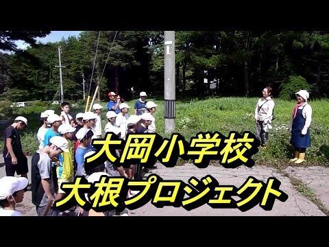大岡小学校大根プロジェクト−種まき
