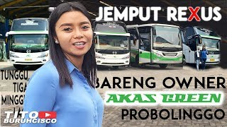 Video AMBIL UNIT REXUS 2018 BARENG OWNER AKAS GREEN PROBOLINGGO MP3, 3GP, MP4, WEBM, AVI, FLV Oktober 2018