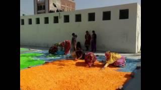 Gulmeher holi colour making story