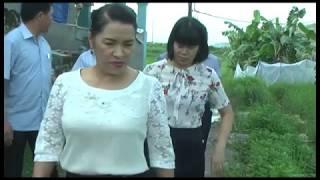 Đồng chí Phó Bí thư Thường trực Thành ủy thăm, tặng quà các gia đình chính sách, người có công nhân dịp 27-7