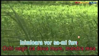 Doi Ochi Negri -Etno DANCE  Karaoke Profesional