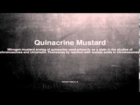 Medical vocabulary: What does Quinacrine Mustard mean