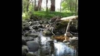 Badger Creek Australia  City new picture : Badger Creek, Healsville, Victoria