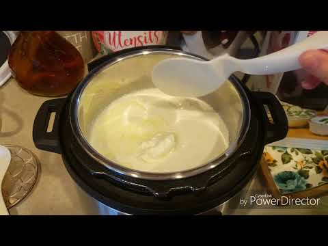 YOGURT GRIEGO EN INSTANT POT