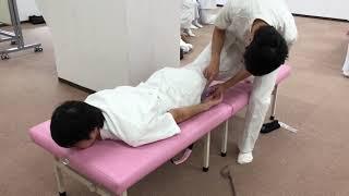 作業療法科 授業の様子