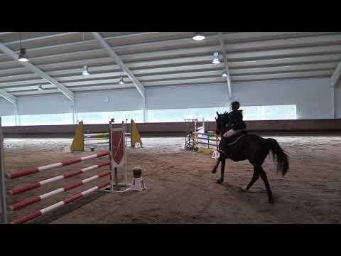 Concurso de Saltos San Fermín 171118 Video 8