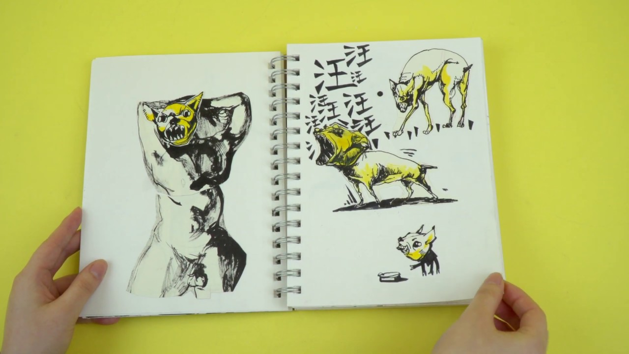 Video of Jinny Zhang's sketchbook