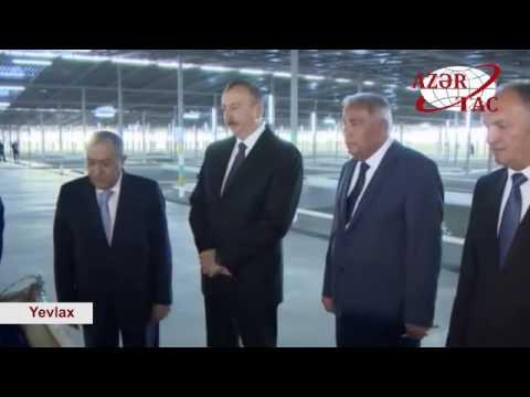 Prezident İlham Əliyev Varvara balıqartırma müəssisəsinin açılışında iştirak edib (видео)