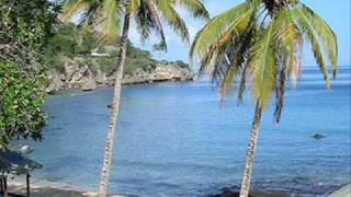 No video. Just a picture of where'd I'd rather be on Christmas. Keep the snow. I'll take a coconut tree.