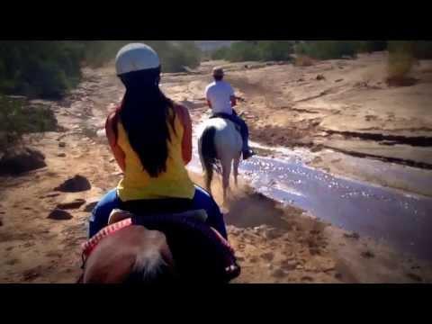horseback riding, palm springs, linh