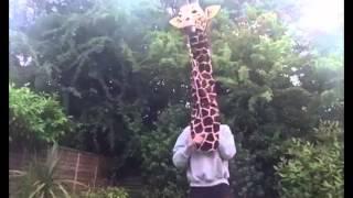 La chose la plus drôle que tu auras vu aujourd'hui ! - YouTube