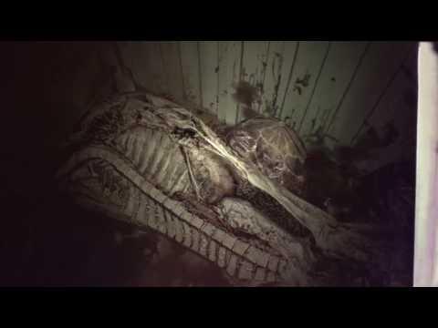 Resident Evil 7 : trailer E3