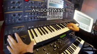 Waldorf Wave Ambient Pads Deep Forest