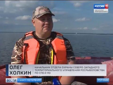 Инспекторы Рыбоохраны следят за соблюдением новых правил рыболовства на Ладоге и в Финском заливе