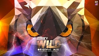 WILD (ORIGINAL MIX) - ZESTTY  TEASERhttps://www.facebook.com/zesttymusic