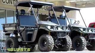 9. Utility Vehicle (American Sportworks, Bulldog, BD700 4x4) UTV