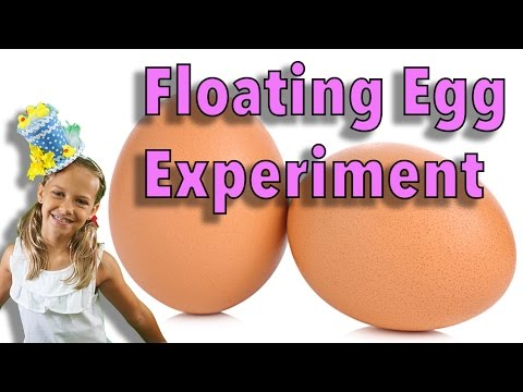Floating egg / saltwater density test (видео)
