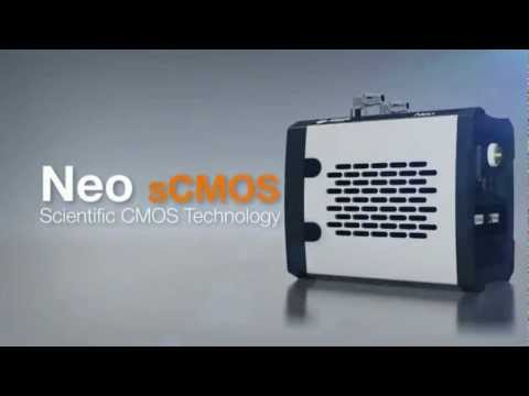 Neo sCMOS Scientific Cameras from Scitech