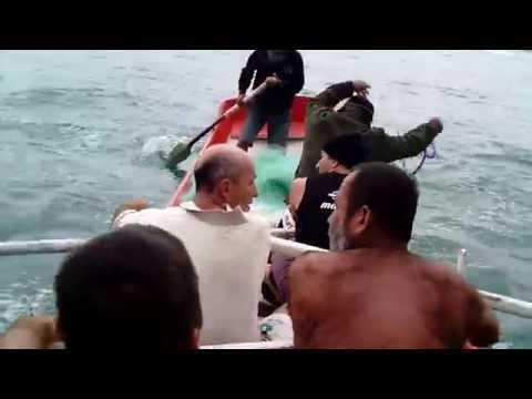 Lance de tainha, filmado de dentro da canoa.