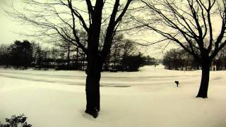 January 2016 Blizzard Timelapse