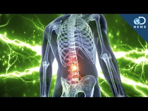 Will Electric Shocks Cure Paralysis?