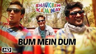 Bum Mein Dum Video song HD Shaukeen Kaminay