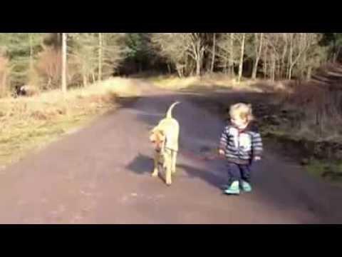 Video: O amigo é aquele que respeita o tempo da gente