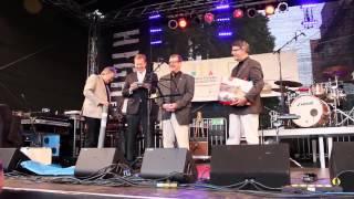Altstadtfest Mölln 2014