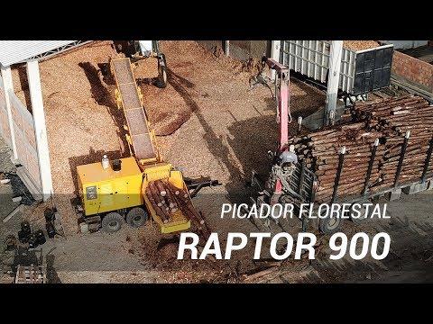 Picador Florestal Raptor 900 - Picando toras de pinus