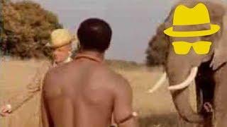 Jan Delay - Für Immer Und Dich (Official Video)