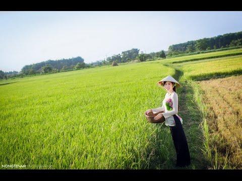 Công ty Thuận Phong Mỹ Tho